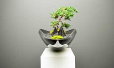 Modern Kasokudo Bonsai Planter By Adrian Magu 3