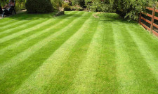 How to Keep Your Lawn Green and Clean 3